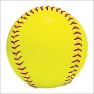 perrysburg-anthony-wayne-softball-logo.jpg